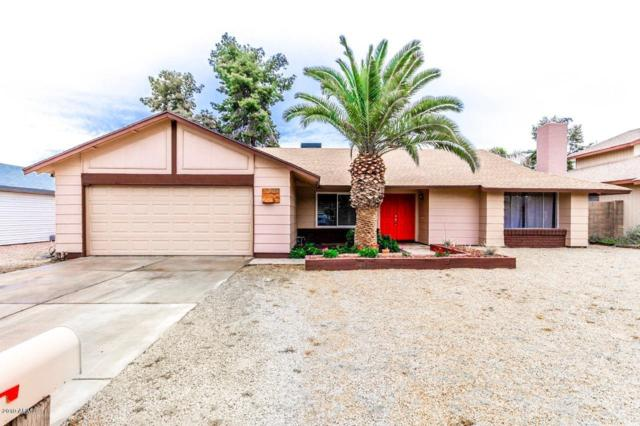 2428 W Kathleen Road, Phoenix, AZ 85023 (MLS #5883144) :: Yost Realty Group at RE/MAX Casa Grande