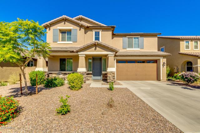 12002 W Overlin Lane, Avondale, AZ 85323 (MLS #5883276) :: The Daniel Montez Real Estate Group