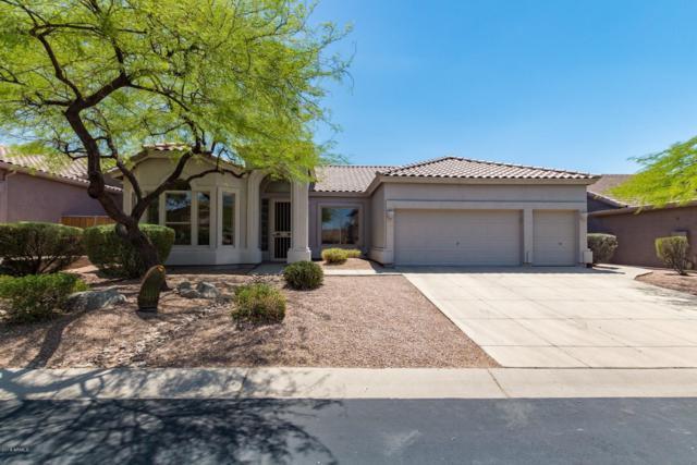 7141 E Quartz Street, Mesa, AZ 85207 (MLS #5883396) :: The Kenny Klaus Team