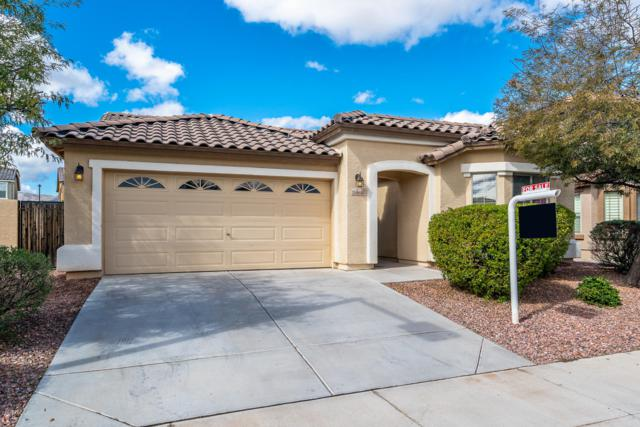 15860 N 182ND Avenue, Surprise, AZ 85388 (MLS #5883587) :: CC & Co. Real Estate Team