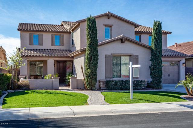 5380 S Cardinal Street, Gilbert, AZ 85298 (MLS #5883740) :: Yost Realty Group at RE/MAX Casa Grande