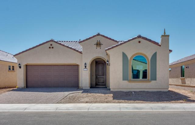 21220 N 265TH Drive, Buckeye, AZ 85396 (MLS #5883910) :: The Property Partners at eXp Realty