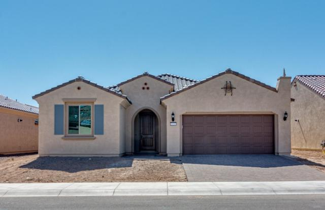 21214 N 265TH Drive, Buckeye, AZ 85396 (MLS #5883928) :: The Property Partners at eXp Realty