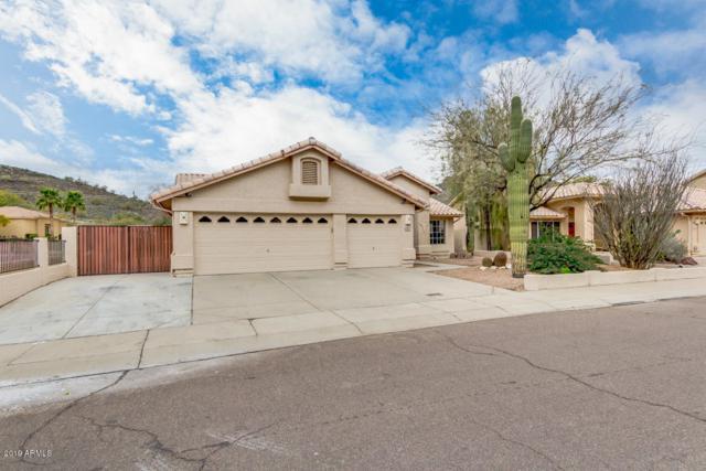 6152 W Questa Drive, Glendale, AZ 85310 (MLS #5883970) :: The W Group