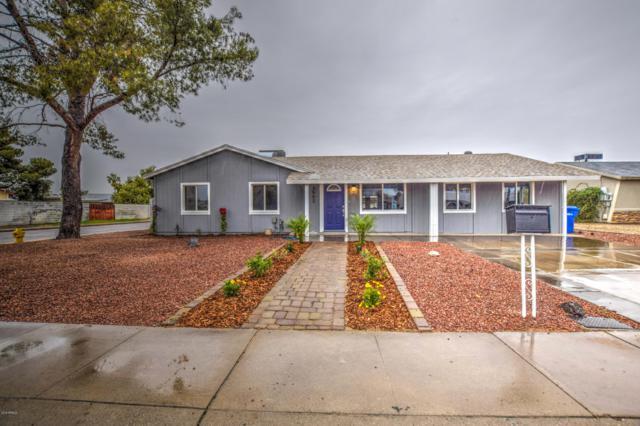 3502 E Crocus Drive, Phoenix, AZ 85032 (MLS #5883996) :: The W Group