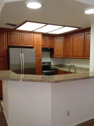 11666 N 28th Drive N #196, Phoenix, AZ 85029 (MLS #5883997) :: Phoenix Property Group