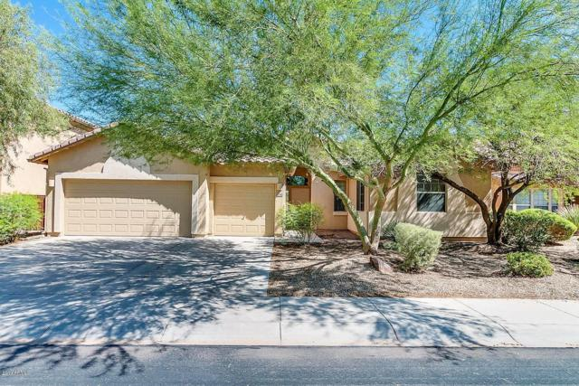 37240 W Oliveto Avenue, Maricopa, AZ 85138 (MLS #5884113) :: Yost Realty Group at RE/MAX Casa Grande