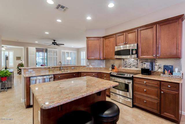 15840 W Windsor Avenue, Goodyear, AZ 85395 (MLS #5884217) :: Yost Realty Group at RE/MAX Casa Grande