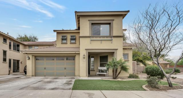 18811 E Pelican Court, Queen Creek, AZ 85142 (MLS #5884231) :: Yost Realty Group at RE/MAX Casa Grande