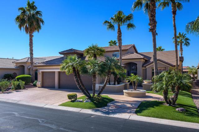 2988 N 158TH Avenue, Goodyear, AZ 85395 (MLS #5884509) :: The Luna Team