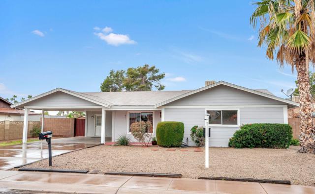 10256 N 37TH Avenue, Phoenix, AZ 85051 (MLS #5884543) :: Yost Realty Group at RE/MAX Casa Grande