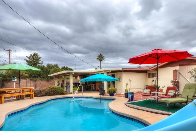 256 N 56TH Street, Mesa, AZ 85205 (MLS #5884635) :: Riddle Realty