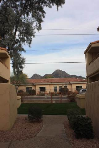 1333 E Morten Avenue #135, Phoenix, AZ 85020 (MLS #5885131) :: The AZ Performance Realty Team