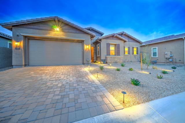 1427 E Gwen Street, Phoenix, AZ 85042 (MLS #5885148) :: CC & Co. Real Estate Team