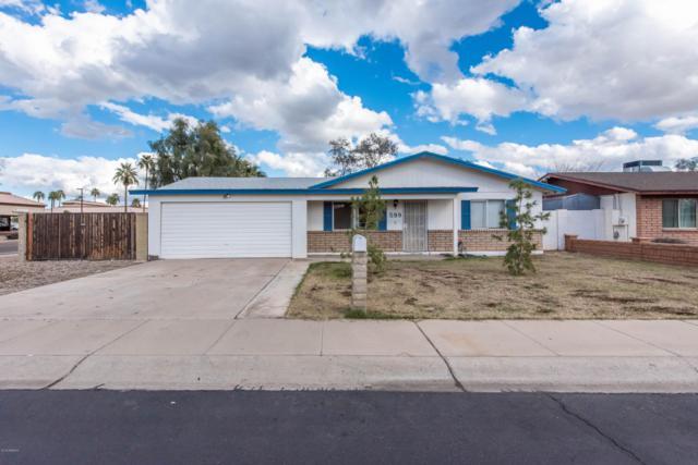 599 N Chippewa Drive, Chandler, AZ 85224 (MLS #5885317) :: Power Realty Group Model Home Center