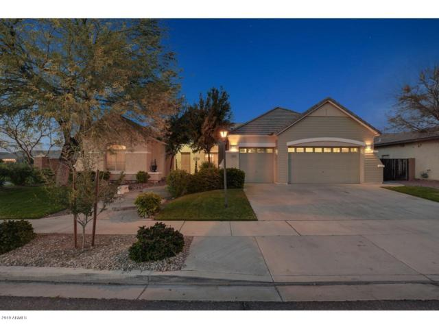 2144 E Canyon Place, Chandler, AZ 85249 (MLS #5885424) :: The W Group