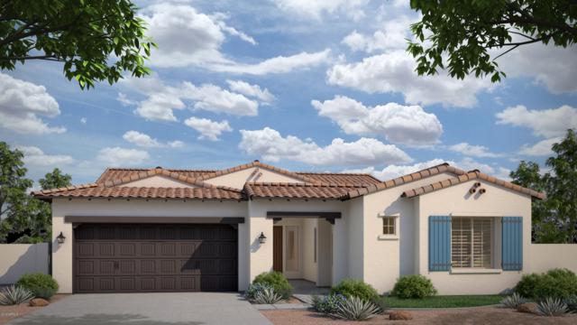 1944 W Union Park Drive, Phoenix, AZ 85085 (MLS #5885426) :: The Ford Team