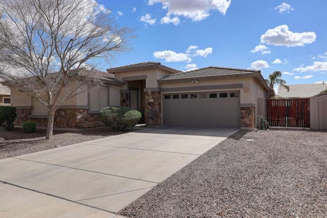 18501 E Pine Valley Drive, Queen Creek, AZ 85142 (MLS #5885524) :: Revelation Real Estate
