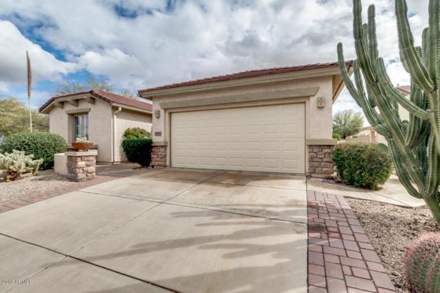 32269 N Larkspur Drive, San Tan Valley, AZ 85143 (MLS #5885610) :: Yost Realty Group at RE/MAX Casa Grande