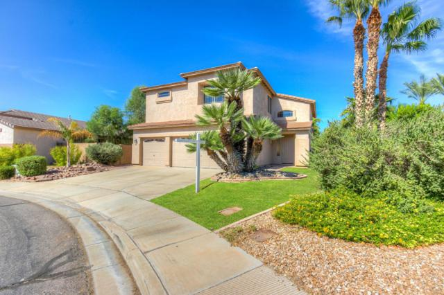2910 E Carla Vista Drive, Chandler, AZ 85225 (MLS #5886040) :: RE/MAX Excalibur