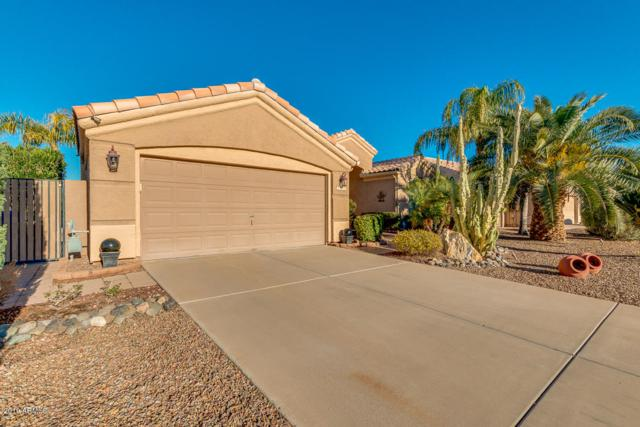 2320 S Revolta, Mesa, AZ 85209 (MLS #5886304) :: Realty Executives