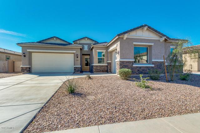 11051 E Tumbleweed Avenue, Mesa, AZ 85212 (MLS #5886682) :: The Everest Team at My Home Group