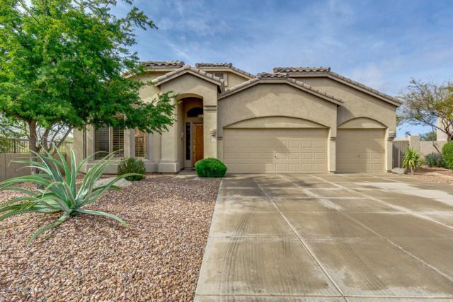 7502 E Wolf Canyon Circle, Mesa, AZ 85207 (MLS #5886773) :: CC & Co. Real Estate Team