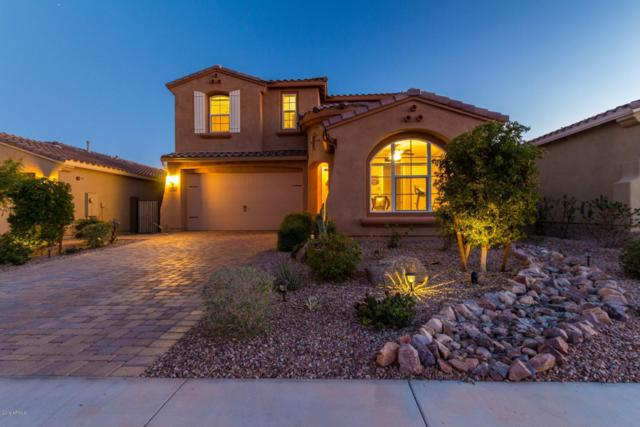 13715 W Linanthus Road, Peoria, AZ 85383 (MLS #5886787) :: Riddle Realty
