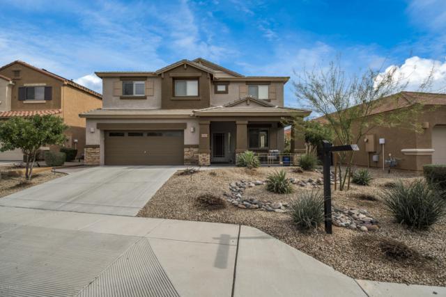 23023 N 43RD Place, Phoenix, AZ 85050 (MLS #5886866) :: Yost Realty Group at RE/MAX Casa Grande