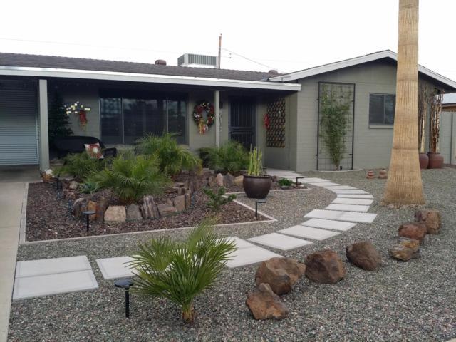 5316 E Colby Street, Mesa, AZ 85205 (MLS #5886925) :: Yost Realty Group at RE/MAX Casa Grande