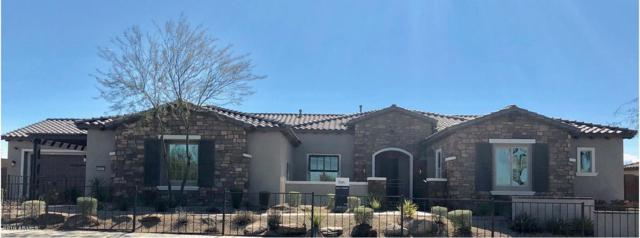 6007 E Calle Marita Lane, Cave Creek, AZ 85331 (MLS #5886980) :: The Laughton Team