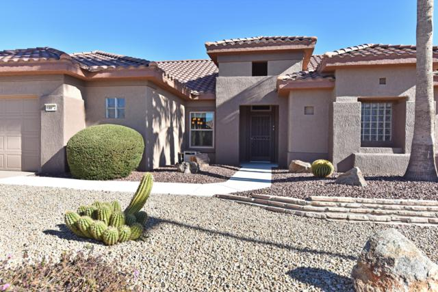 15572 W Clear Canyon Drive, Surprise, AZ 85374 (MLS #5887109) :: Lifestyle Partners Team