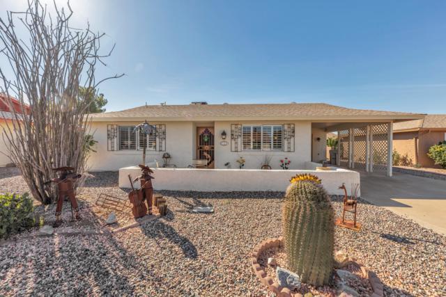 819 Leisure World, Mesa, AZ 85206 (MLS #5887334) :: Yost Realty Group at RE/MAX Casa Grande