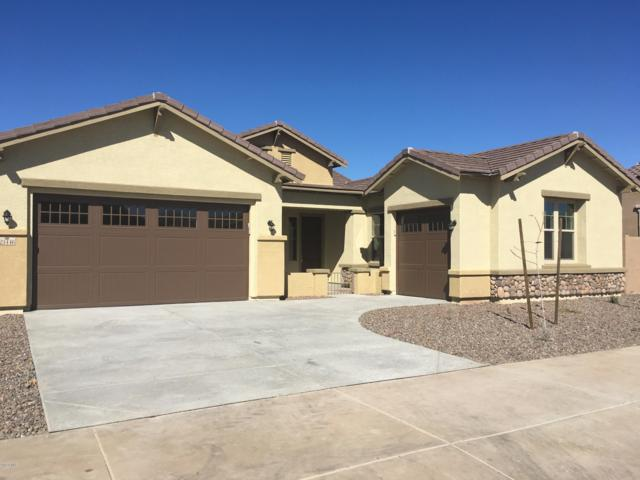 23446 S 209TH Place, Queen Creek, AZ 85142 (MLS #5887367) :: The Bill and Cindy Flowers Team