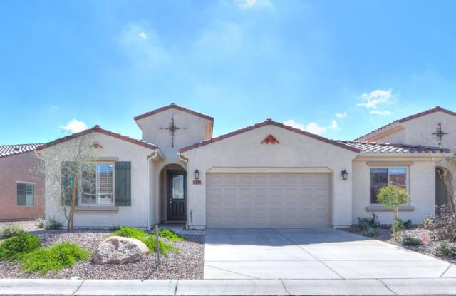 4525 W Hanna Drive, Eloy, AZ 85131 (MLS #5887918) :: The Laughton Team
