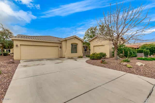 42619 W Mallard Lane, Maricopa, AZ 85138 (MLS #5888258) :: CC & Co. Real Estate Team