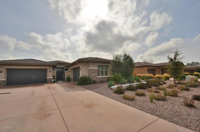 14481 W Mountain View Drive, Litchfield Park, AZ 85340 (MLS #5888326) :: The Garcia Group