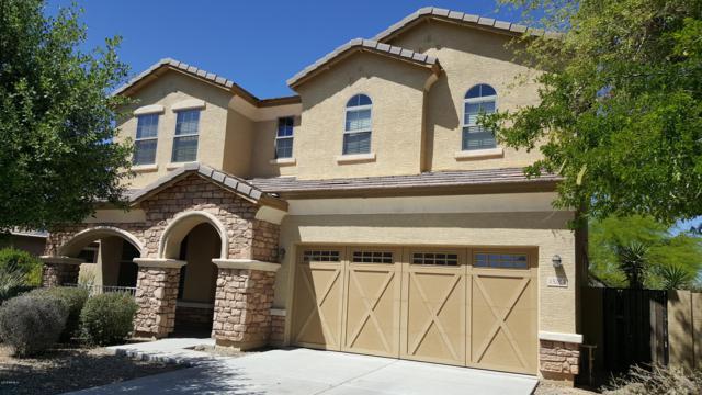 15204 W Westview Drive, Goodyear, AZ 85395 (MLS #5888479) :: Yost Realty Group at RE/MAX Casa Grande