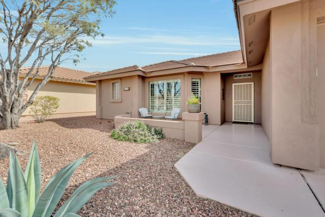 10905 E Onza Avenue, Mesa, AZ 85212 (MLS #5888755) :: CC & Co. Real Estate Team