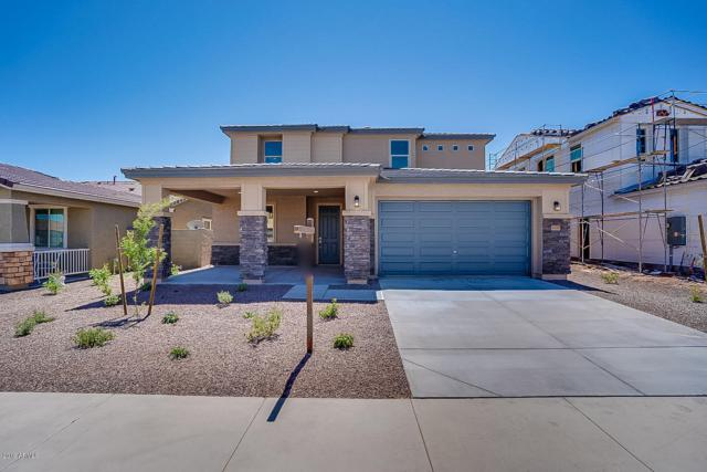 18195 W Via Montoya Drive, Surprise, AZ 85387 (MLS #5888892) :: Team Wilson Real Estate