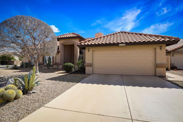 11059 W Runion Drive, Sun City, AZ 85373 (MLS #5889159) :: CC & Co. Real Estate Team