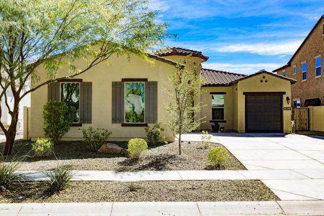 3893 E San Carlos Place E, Chandler, AZ 85249 (MLS #5889175) :: The Daniel Montez Real Estate Group