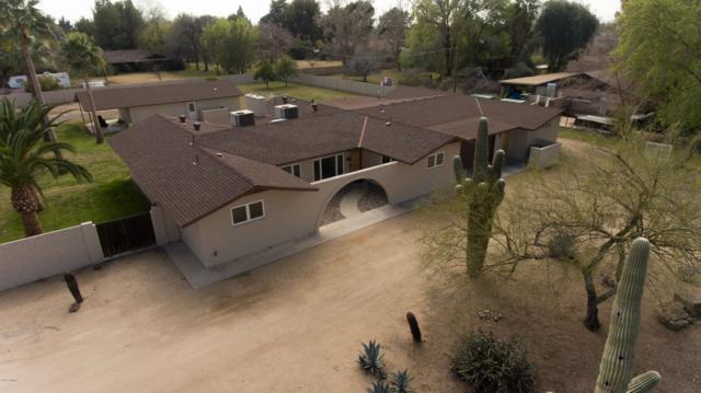 6901 W Sweetwater Avenue, Peoria, AZ 85381 (MLS #5889532) :: CC & Co. Real Estate Team