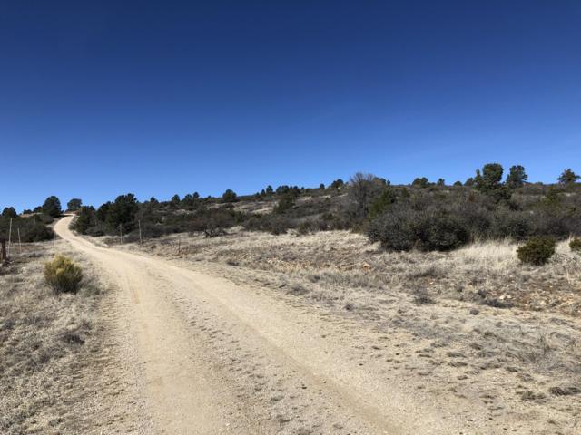 18424 W Ravens Nook, Peeples Valley, AZ 86332 (MLS #5889700) :: Yost Realty Group at RE/MAX Casa Grande