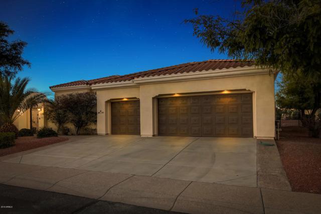 13210 W Santa Ynez Drive, Sun City West, AZ 85375 (MLS #5889789) :: Yost Realty Group at RE/MAX Casa Grande