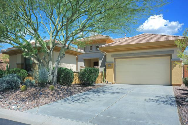 1526 W Spirit Drive, Anthem, AZ 85086 (MLS #5889911) :: Yost Realty Group at RE/MAX Casa Grande