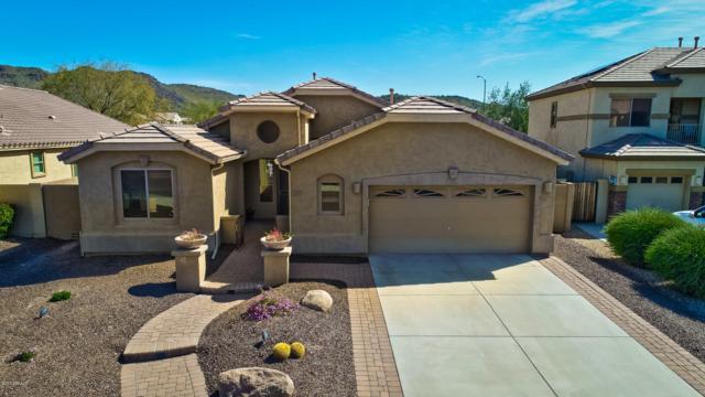 26405 N 54TH Avenue, Phoenix, AZ 85083 (MLS #5890340) :: REMAX Professionals