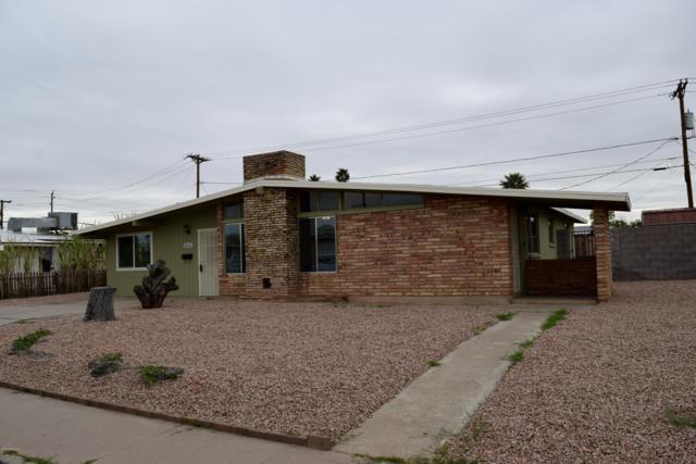 1613 W 7TH Place, Mesa, AZ 85201 (MLS #5890434) :: Yost Realty Group at RE/MAX Casa Grande