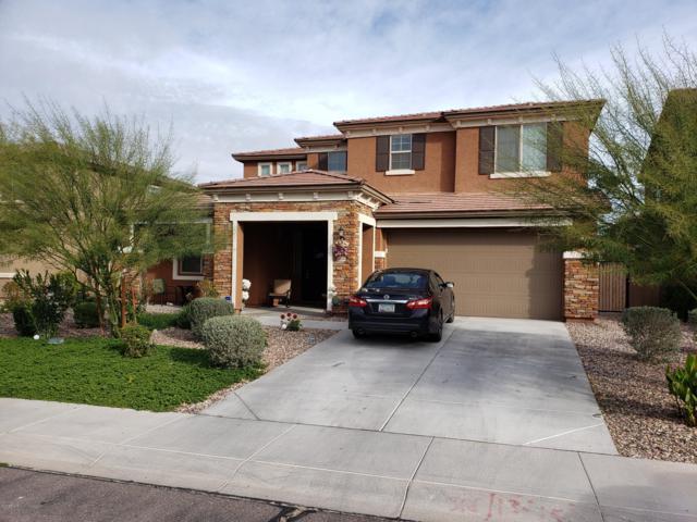 12172 W Davis Lane, Avondale, AZ 85323 (MLS #5890824) :: The Results Group