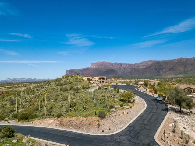 4046 S Calle Medio A Celeste, Gold Canyon, AZ 85118 (MLS #5890996) :: The Wehner Group